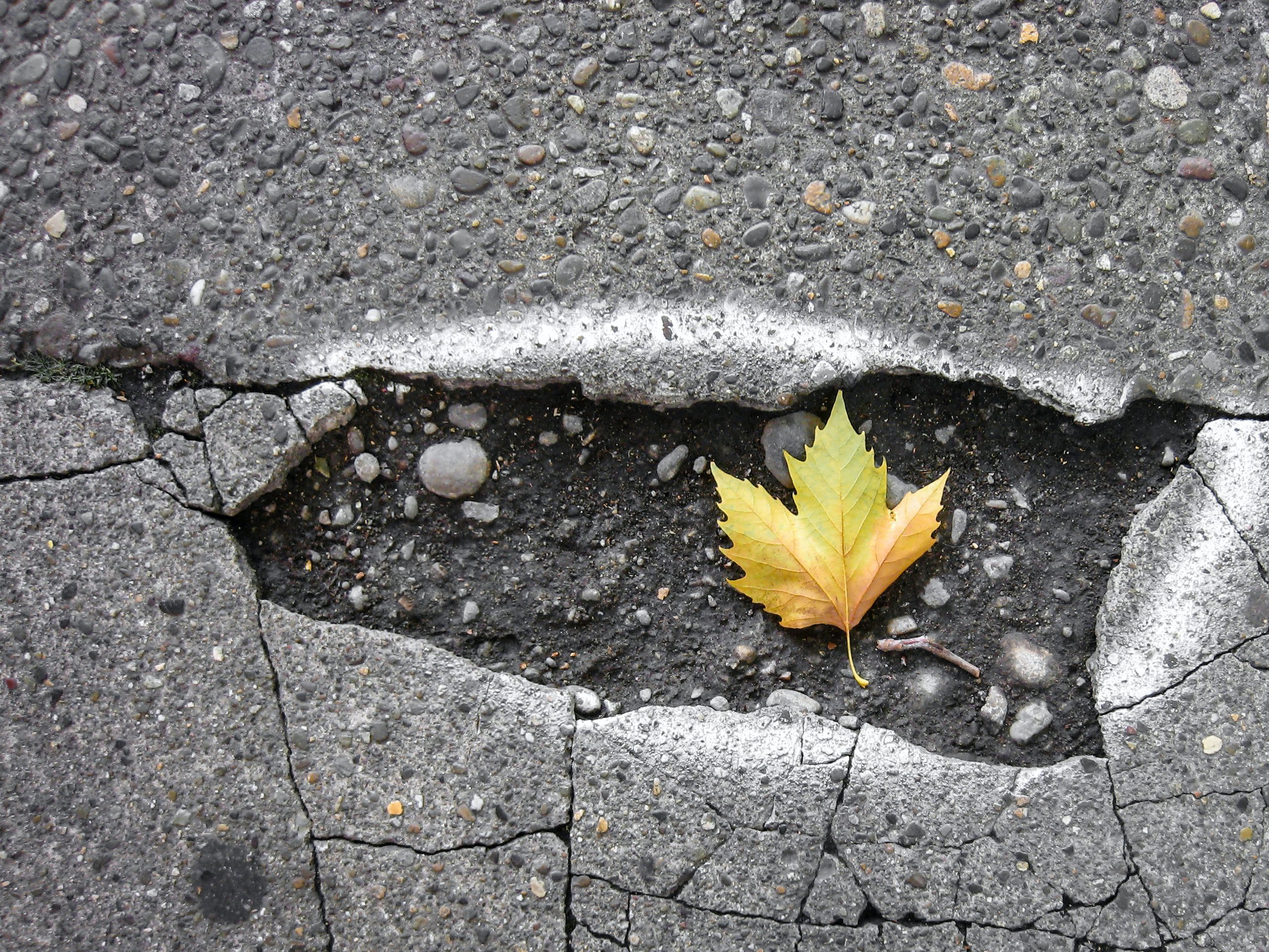 Patch Your Potholes This Winter