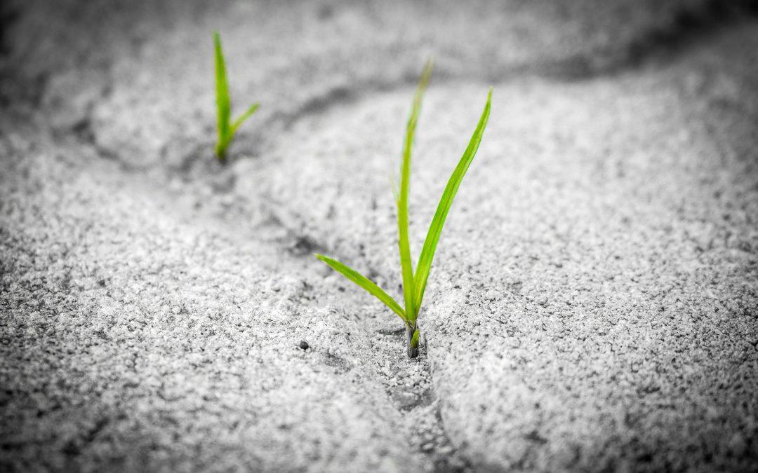 Spring Asphalt Maintenance Checklist